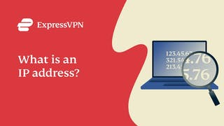 What is an IP address? IP addresses and privacy explained